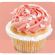 cupcake-lily`s