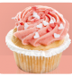 Lilly`s cupcake