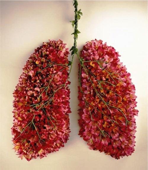 allergie-histamine-airmagazine