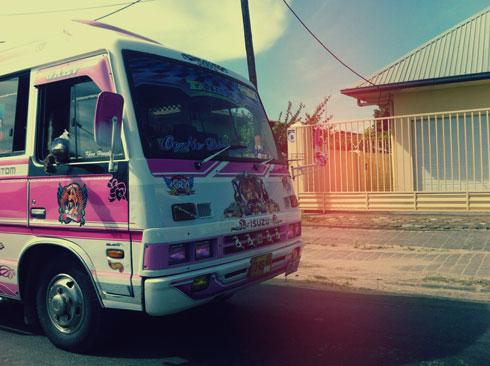 paramaribo-roze-bus