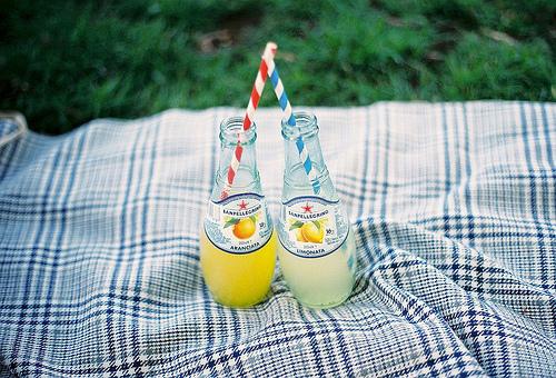 picknick-flesjes