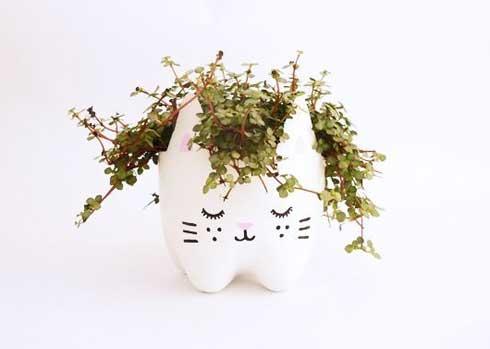 cat--plantenpot