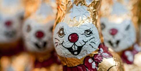 bunny-bijten